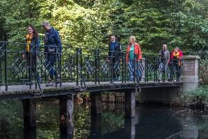 houtmoed lopen over de brug