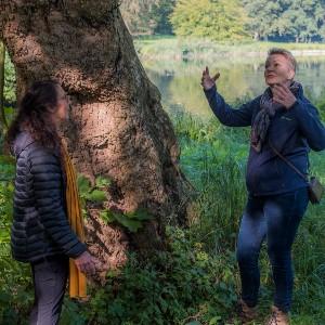 Houtmoed gesprek bij boom